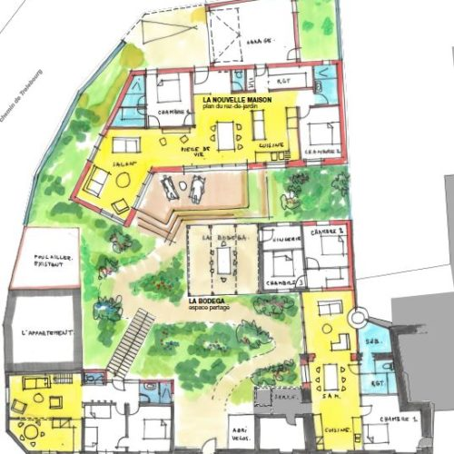 plan dessin croquis transformation maison individuelle